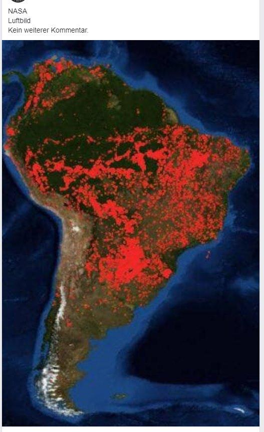 Amazonas Brand Aktuell